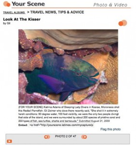 LAtimes_Kosrae_Parrotfish